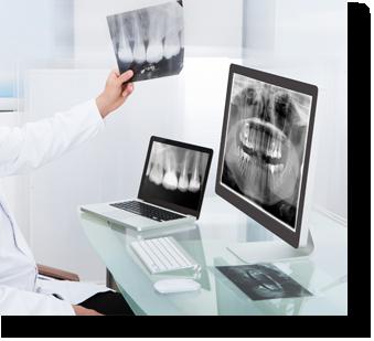 yearly exam and x-rays